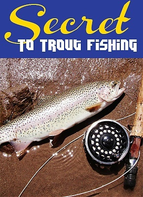 Best spinning reel reviews 2016 top best fishing reels for How much does it cost to get a fishing license