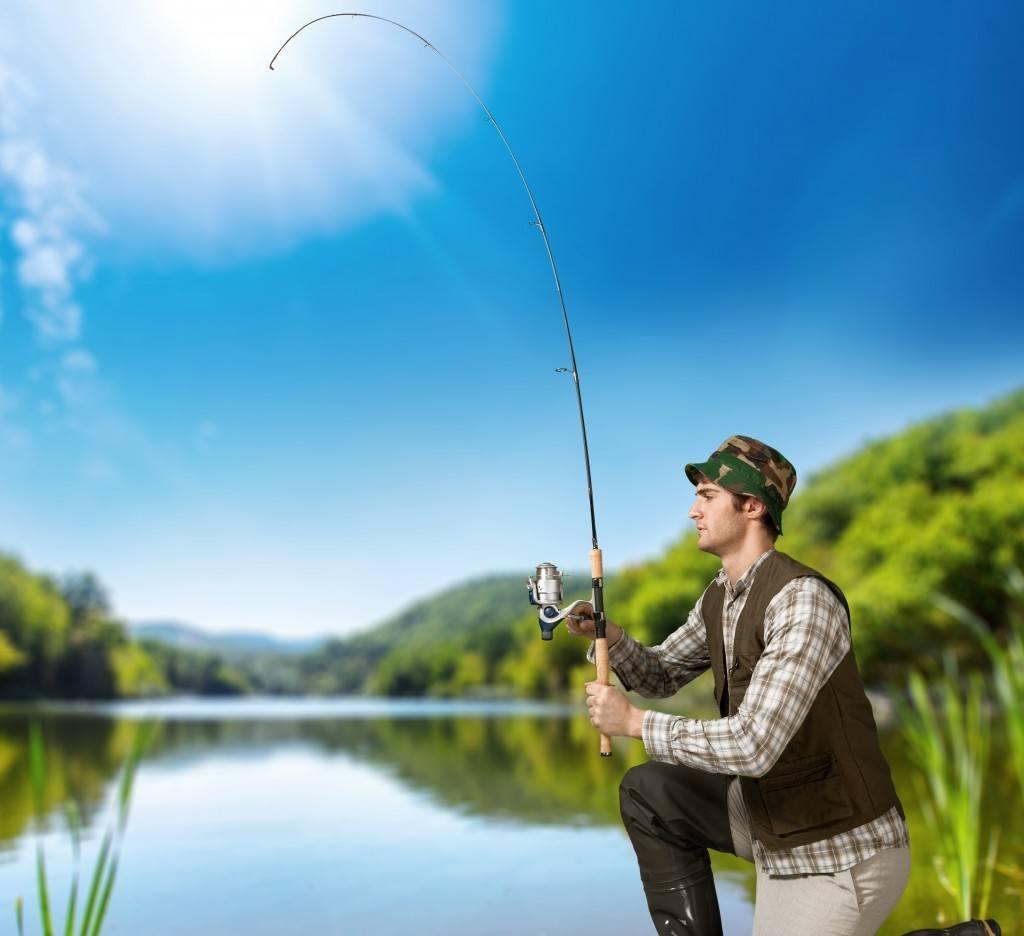 Fishing, rod, bait.